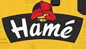 Hame logo